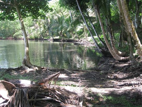 3 Ocean View Coastal Lots, Bocas : Bocas Del Toro : Panama