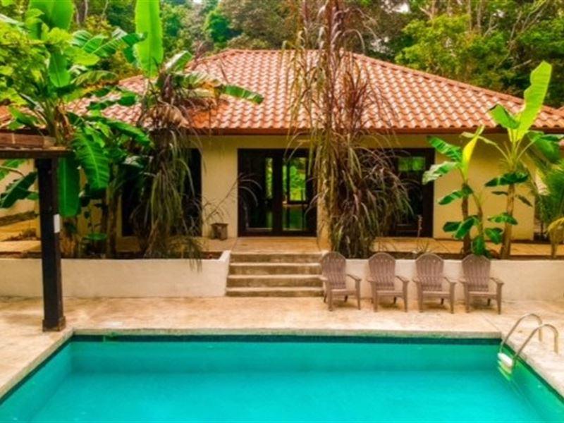 Bocas Del Toro New Custom Jungle : Bocas Del Toro : Panama