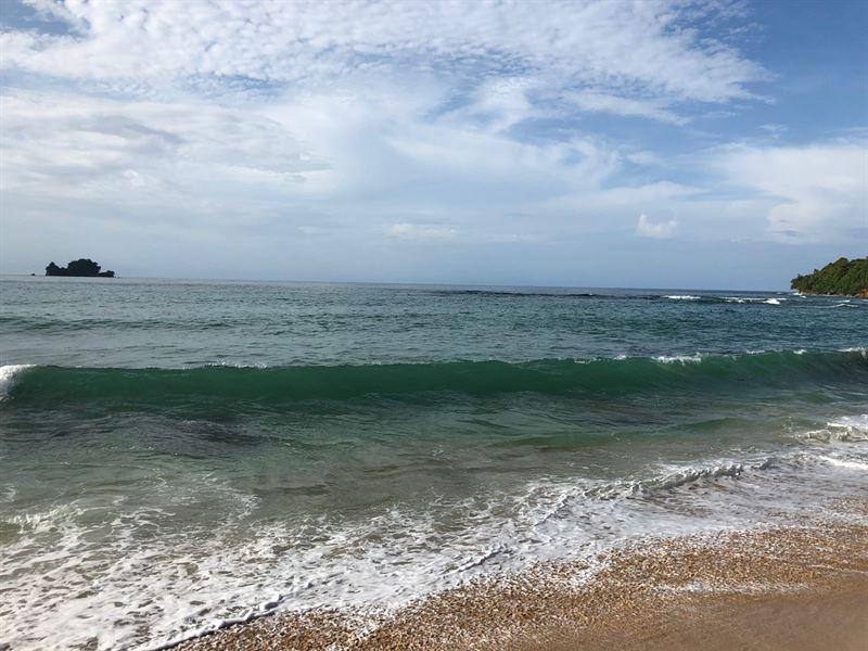 Coastal Beachfront Land Bocas Del : Boca Del Drago : Panama
