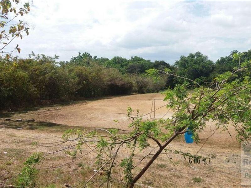 El Valle Area Land For Sale Panama : San Carlos : Panama