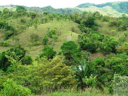 Lot Ocean Ridge Estates, Veraguas : Santiago De Veraguas : Panama