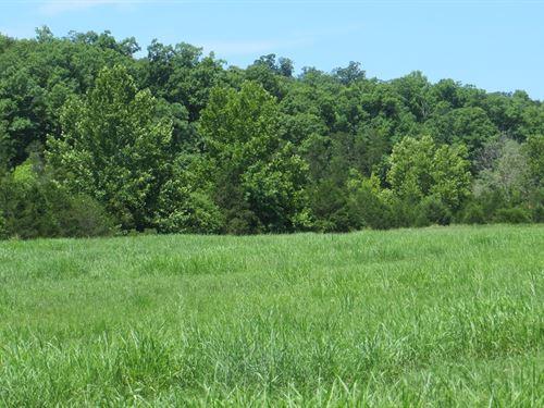 Waterfront Property Arkansas Ozarks : Clarkridge : Baxter County : Arkansas