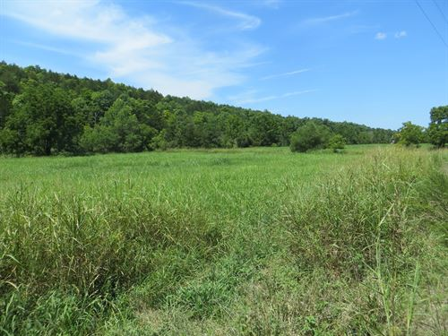Creek Front Homesite : Clarkridge : Baxter County : Arkansas