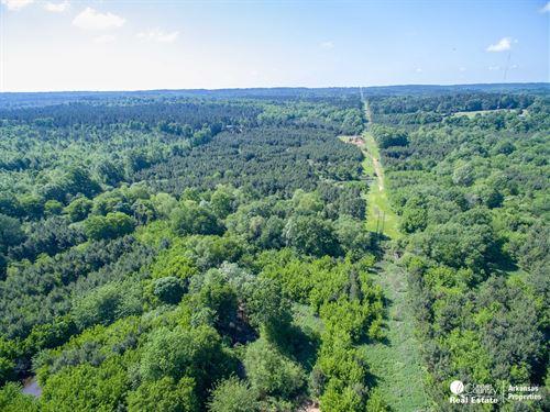 Timberland in South Arkansas : De Queen : Sevier County : Arkansas