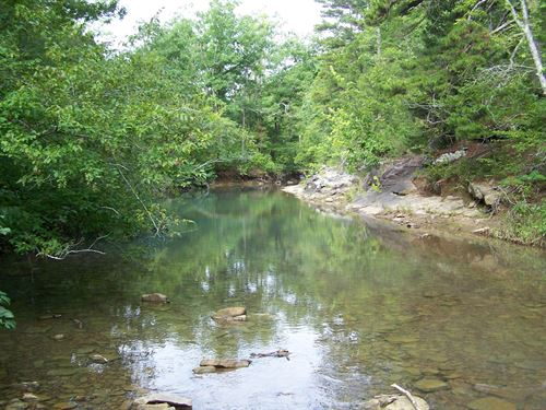 425 Acres Prime Ozarks Hunting Land : Dennard : Van Buren County : Arkansas