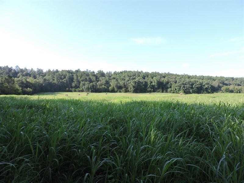 122 Acres M/L Farm Views Pilot : Booneville : Scott County : Arkansas