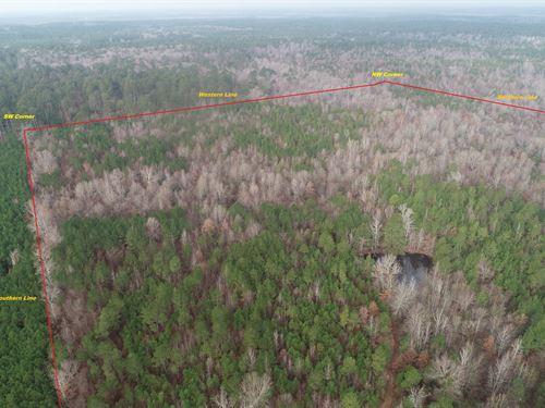 Rural Country Home Site Potential : Camden : Ouachita County : Arkansas