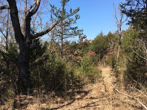Acreage For Sale in The Ozarks : Eureka Springs : Craighead County : Arkansas