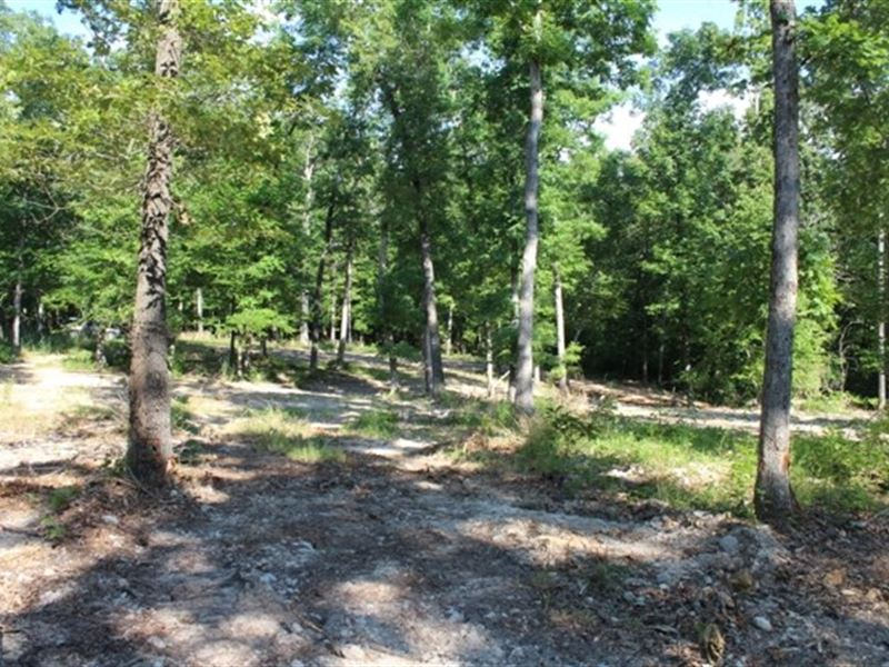 Seven Acres Near National Forest : Fiftysix : Stone County : Arkansas