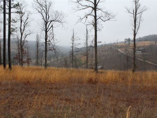 3.02 Acre Building Lot With View : Fox : Stone County : Arkansas