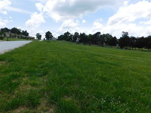 Ozark Mountain Building Lot : Harrison : Boone County : Arkansas