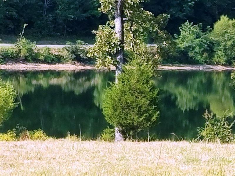 Lakefront Lots Horseshoe Bend : Horseshoe Bend : Izard County : Arkansas
