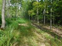 Newton County, Low Gap, Keys Gap : Jasper : Newton County : Arkansas