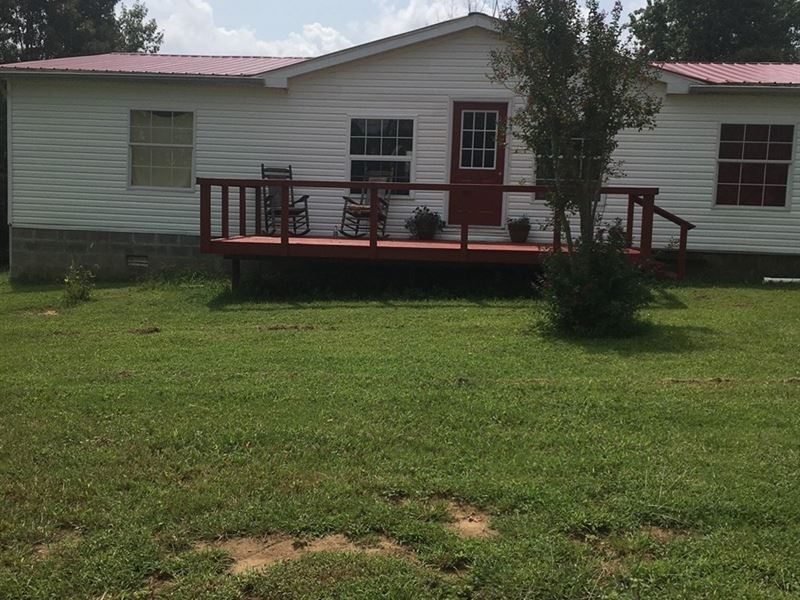 Country Home on 20 Acres : Maynard : Randolph County : Arkansas