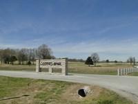 Golf Course Lot In Arkansas : Melbourne : Izard County : Arkansas