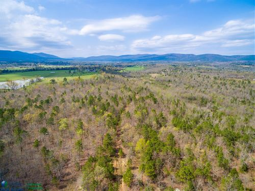 Timberland Development Acreage Polk : Mena : Polk County : Arkansas