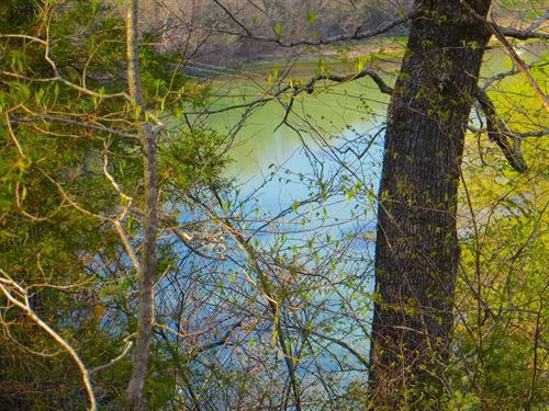 River Front Property in The Ozarks : Mammoth Spring : Fulton County : Arkansas