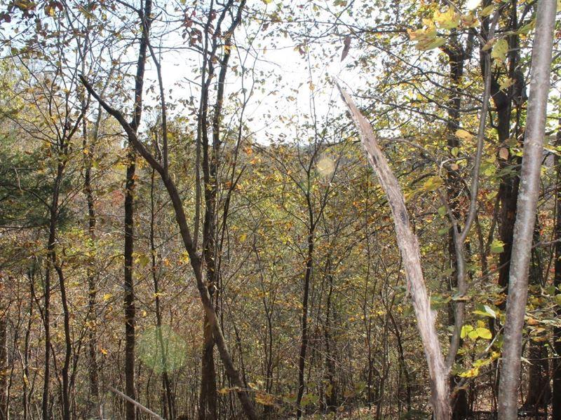 Fourteen Acres With A View : Mountain View : Stone County : Arkansas