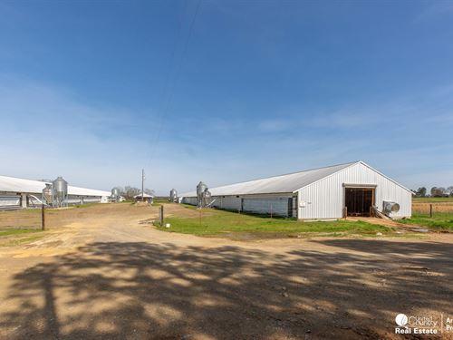 Poulty Farm Opportunity : Oden : Montgomery County : Arkansas
