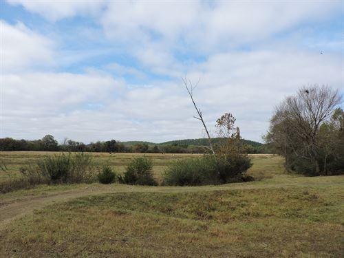 Cattle Ready Farm Land : Parks : Scott County : Arkansas