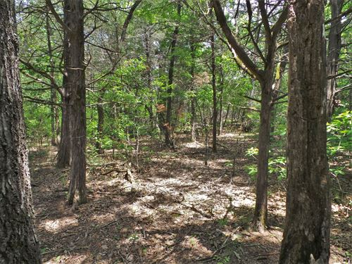 Bull Shoals Lakeside Community Lots : Peel : Marion County : Arkansas