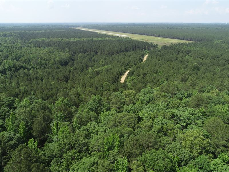 Airport Tract 3,454 ac Timber Land : Sheridan : Grant County : Arkansas
