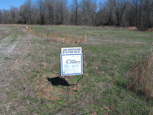 Duck Hunters Dream On Black River : Pocahontas : Randolph County : Arkansas