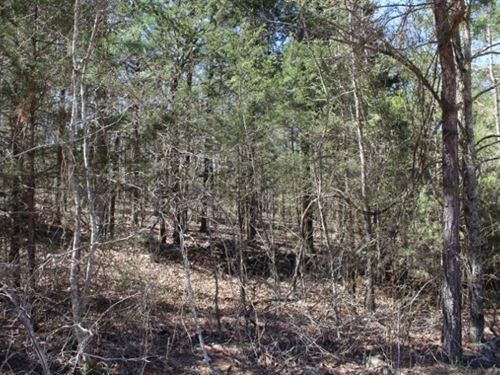 Five Acre Building Tract For Sale : Timbo : Stone County : Arkansas