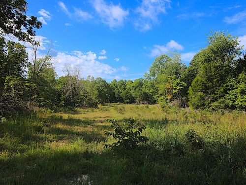 Arkansas Hunting Property Randolph : Ravenden : Randolph County : Arkansas
