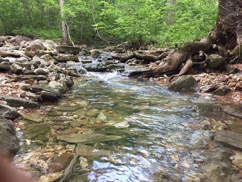 Ozark Mountain Property Marion Co : Yellville : Marion County : Arkansas