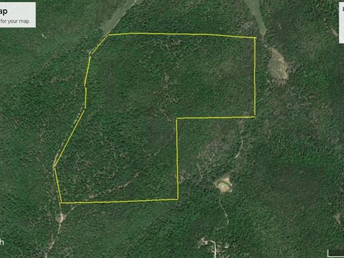 Mtn Top Land Close To Bull Shoals : Yellville : Marion County : Arkansas