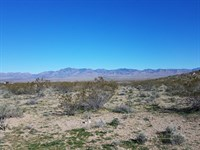 Dolan Springs, Gateway Acres AZ : Dolan Springs : Mohave County : Arizona