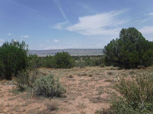 Rural Land Northern Arizona, 1.28 : Seligman : Yavapai County : Arizona