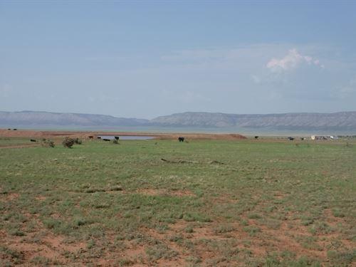 Arizona Land an Inexpensive Price : Seligman : Yavapai County : Arizona