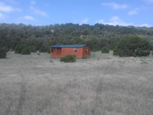Rustic Cabin 42+ Acres Southern : Aguilar : Las Animas County : Colorado