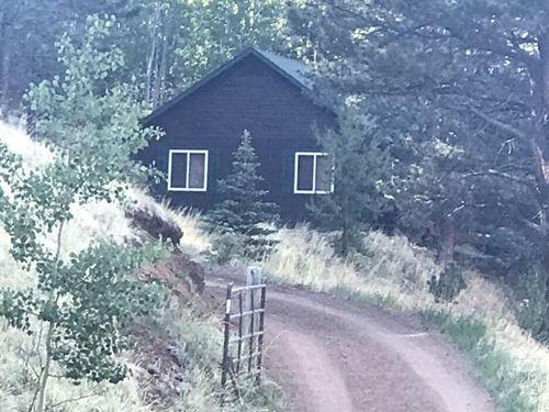 Adorable Colorado Mountain Cabin : Divide : Teller County : Colorado