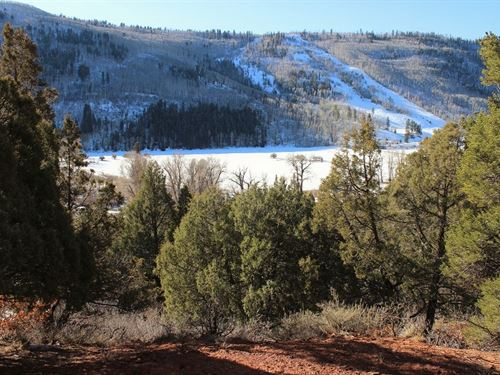 Dolores River Valley Acreage, 1 : Dolores : Montezuma County : Colorado