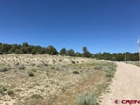Land Southwest Colorado, Subdivide : Dolores : Montezuma County : Colorado