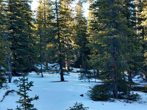 Building Lot Fairplay 80440 Camping : Fairplay : Park County : Colorado