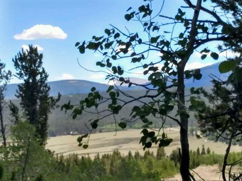 Acreage Fishing Camping Land : Fairplay : Park County : Colorado
