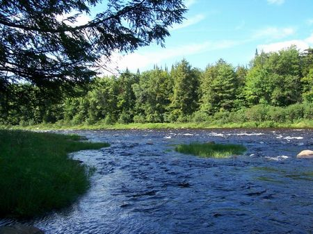 138 Acres Creek Frontage Adirondack : Ohio : Herkimer County : New York