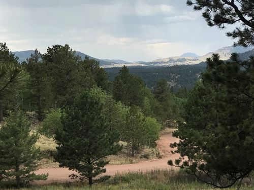 Amazing Views Privacy, No Covenants : Florissant : Teller County : Colorado