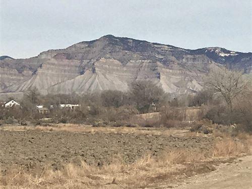 Prime, Corner Building Lot 360 : Grand Junction : Mesa County : Colorado