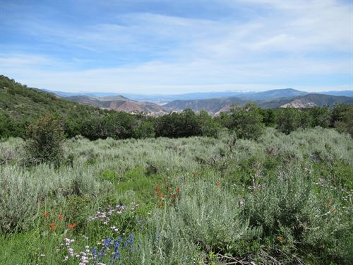 Colorado Hunting Land Flattops : Gypsum : Garfield County : Colorado