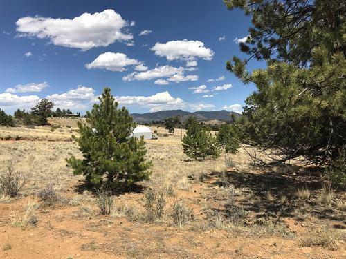 .68 Acres no Covenants Hartsel CO : Hartsel : Park County : Colorado