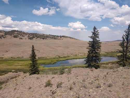 Pond River Stream Recreational : Hartsel : Park County : Colorado