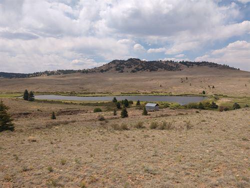 Fishing Pond Stream Acreage : Hartsel : Park County : Colorado