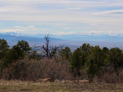 Private Mountain Lot Western : Cedaredge : Delta County : Colorado
