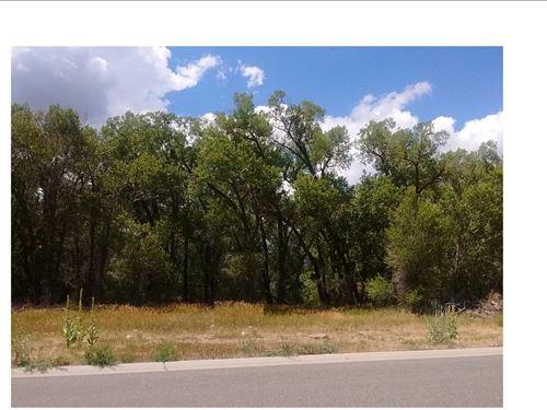 Creekside Property Cedaredge CO : Cedaredge : Delta County : Colorado