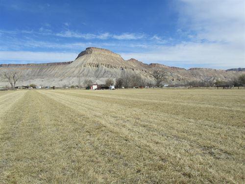 Acreage Irrigation Palisade : Clifton : Mesa County : Colorado
